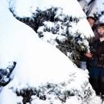 idei_dlya_fotosessii_zimoy_photo_12